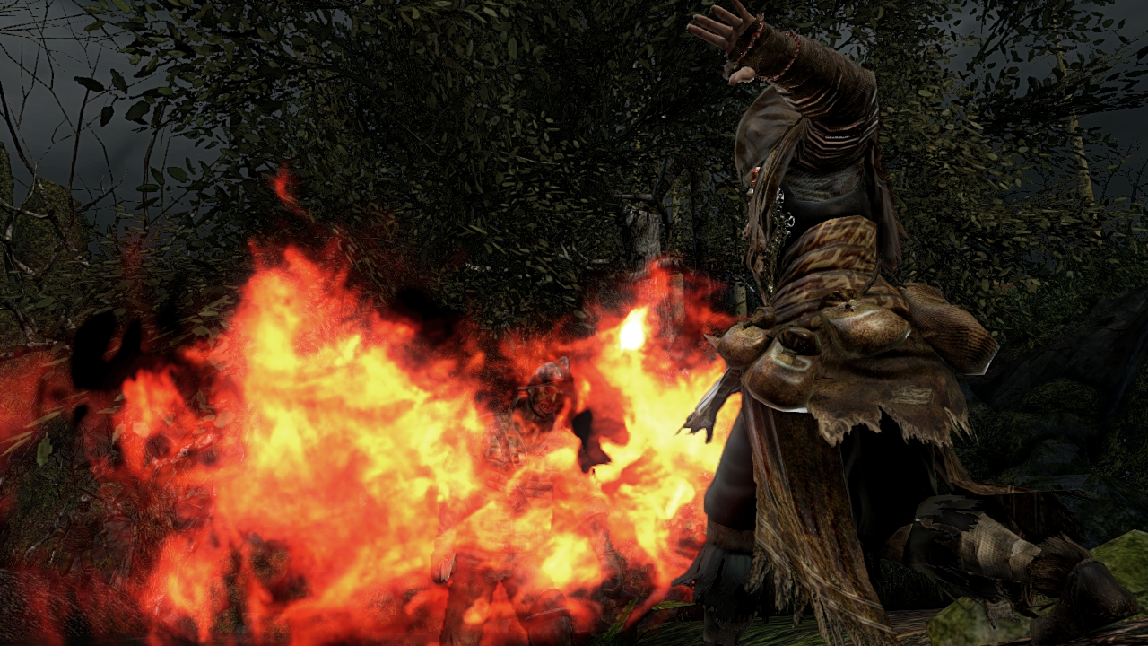 dark-souls-2-screen-shot-19.jpg